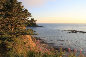 Cape Arago Oregon
