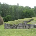 Costesti Citadel