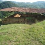 Cetatea Costesti