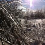 Frozen Bangor, ME