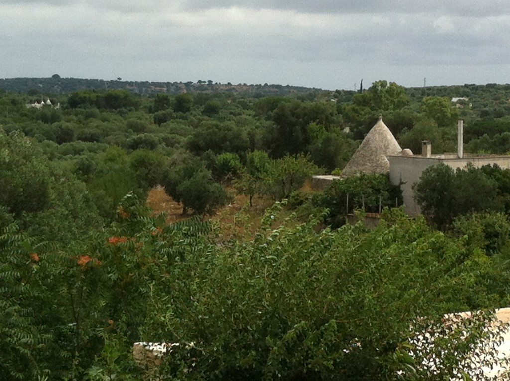 Picture of trulli, from the roof of Masseria Genovese